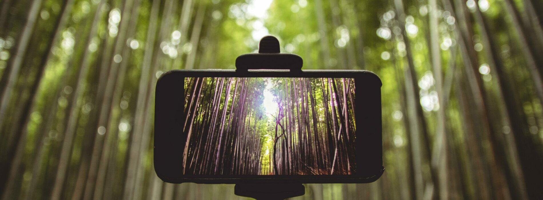Stawy, selfie stick, monopod – co warto wybrać?